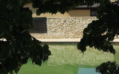 Tetín – kamenné dlažby aobklady Mediterran - 42